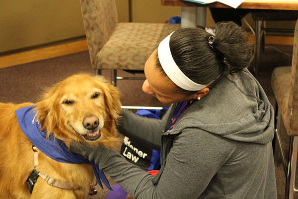 picture of student with therapy dog